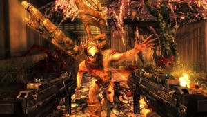 Shadow Warrior (4)