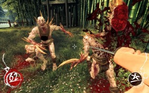 Shadow Warrior (5)